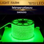 ไฟสายยาง SMD 5050 (100 m.) สีเขียว (ท่อแบน)