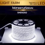 ไฟสายยาง SMD 5050 (100 m.) สีขาว (ท่อแบน)