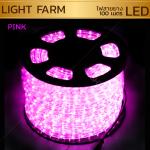 ไฟสายยาง ท่อกลม LED 100 m สีชมพู