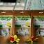 ชาใบมะรุม 50 ซองชา thumbnail 1