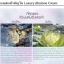 พร้อมส่ง ครีมเดียวที่รวบรวมส่วนผสมล้ำค่าkiss luxury abalone cream thumbnail 10