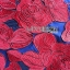 ชุดเดรสเกาหลี พร้อมส่งมินิเดรสปักลายดอกกุหลาบสีแดงสไตล์หวานปรเซ็กซี่ thumbnail 14