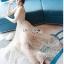 ชุดเดรสเกาหลีพร้อมส่ง ค็อกเทลเดรสผ้าทูลเลปักเลื่อม thumbnail 4