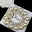 พร้อมส่ง Christian Dior Earring ต่างหูมุด Dior งานอย่างดี thumbnail 2