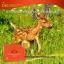 พร้อมส่ง Deerparcental 50000พละกำลังไม่สิ้นสุด thumbnail 11