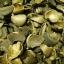 ชาอินคาชงน้ำร้อน สูตร3(เปลือกใบ+ใบเตยชะเอม) 100ชิ้น thumbnail 3