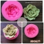 silicone mold ทำวุ้น กัมเพส ฟองดอง ลาย ดอกไม้หรือต้นตะบองเพชร thumbnail 2