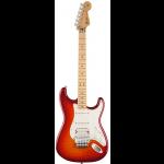 Standard Stratocaster HSS FR Plus Top
