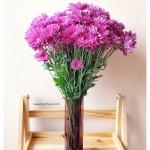 Plum Glass Vase แจกันแก้วทรงกระบอก ปากแหลม สีม่วงอมแดง