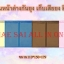 ม่านหน้าต่างกันยุง รุ่นแม่เหล็กเก็บเสียง สีพื้น ขนาด 110*150 thumbnail 1