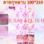 ม่านกันยุงลายกุหลาบ สีชมพู ขนาด 90*210 thumbnail 1