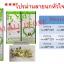 ม่านกันยุง ประตู90*210 หน้าต่าง 110*150 thumbnail 5