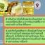 BEAUTY ONE Royal Jelly บิวตี้วัน รอยัลเจลลี่ นมผึ้งบิวตี้วัน นมผึ้ง 100% Natural thumbnail 16