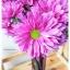 Plum Glass Vase แจกันแก้วทรงกระบอก ปากแหลม สีม่วงอมแดง thumbnail 8
