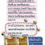 BEAUTY ONE Royal Jelly บิวตี้วัน รอยัลเจลลี่ นมผึ้งบิวตี้วัน นมผึ้ง 100% Natural thumbnail 15