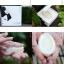 RAN SILKY COCOON SOAP รัน ซิ้ลกี้ โคคูน โซพ สบู่ใยไหมญี่ปุ่น thumbnail 6