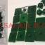 หมุดติดม่านแบบเทปกาวสองหน้า สีเขียว thumbnail 1