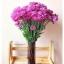Plum Glass Vase แจกันแก้วทรงกระบอก ปากแหลม สีม่วงอมแดง thumbnail 1