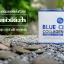 BLUE CI COLLAGEN บลูชิ คอลลาเจน แค่ดื่ม ก็เหมือนทำโบท็อกซ์ thumbnail 3