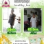 Moringa Tea by Healthy Tea Shop ชามะรุมเฮลตี้ ซองสีน้ำตาล thumbnail 16