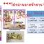 ม่านกันยุง ประตู90*210 หน้าต่าง 110*150 thumbnail 4