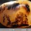 ▽เดนไดทริก อาเกต Dendritic Agateขัดมันจากมาดากัสการ์ (79g) thumbnail 1