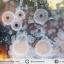 ▽เดนไดทริก อาเกต Dendritic Agateขัดมันจากมาดากัสการ์ (52g) thumbnail 5
