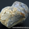 หอยโบราณเป็นหิน (ใบพัด)จากประเทศจีน (16g)