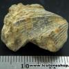 หอยโบราณเป็นหิน (ใบพัด)จากประเทศจีน (7g)