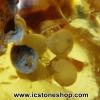 ▽อำพันโดมินิกัน มีฟองขาวภายใน Dominican Blue Amber ของแท้(4.52ct)