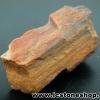▽ไม้กลายเป็นหิน Petrified Wood (5.9g)