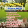 [[new]]สอบนักวิชาการสัตวบาล กรมปศุสัตว์ Line:0624363738 โหลดแนวข้อสอบ