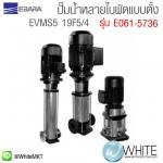 EVMS5 19F5/4 ปั๊มน้ำหลายใบพัดแบบตั้ง รุ่น E061-5736 ยี่ห้อ Ebara (JP)
