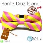 Santa Cruz Island - หูกระต่าย ลายเฉียง สีชมพู เหลือง Premium Quality++ (BT295) by WhiteMKT