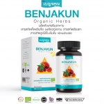 BENJAKUN Organic Herbs เบญจคุณ สารสกัดเห็ดหลินจือ 120 แคปซูล