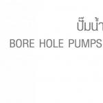 ปั๊มน้ำบาดาลและอุปกรณ์ BORE HOLE PUMPS AND ACCESSORIES