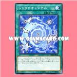 DBHS-JP044 : De-Synchro / Synchro Cancel (Common)