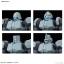 Leo NPD (HGBD) thumbnail 7
