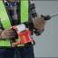 """สว่านกระแทก 17mm (11/16"""") รุ่น MT860X1 ยี่ห้อ Maktec (JP) Hammer Drills thumbnail 7"""