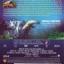 IMAX: Under The Sea : มหัศจรรย์โลกใต้ทะเลลึก thumbnail 2
