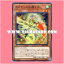 DBHS-JP004 : Protector of Nephthys / Protecting Hand of Nephthys (Normal Parallel Rare) thumbnail 1