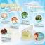 ยาสีฟันสมุนไพรฟันสวยโภคา by Phoca สูตรเดิม สีฟ้า thumbnail 5