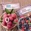 GDM Blossom Jelly เจลลี่ลดน้ำหนัก บาย ใหม่ ดาวิกา บรรจุ 20ซอง(มี 2 รส) thumbnail 3